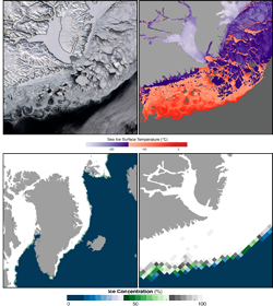East Greenland shows sea ice